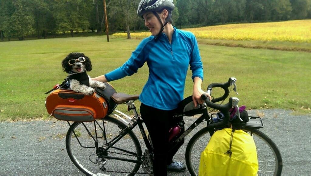 Bike Touring At Pine Creek Gorge Pa Touring Tunes